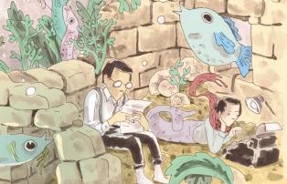 Illustration Alice Socal